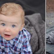 Ollie: 6 Months