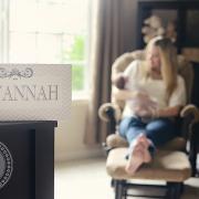 Introducing Savannah